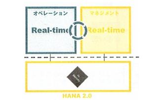 SAP HANAの2つのチャレンジ